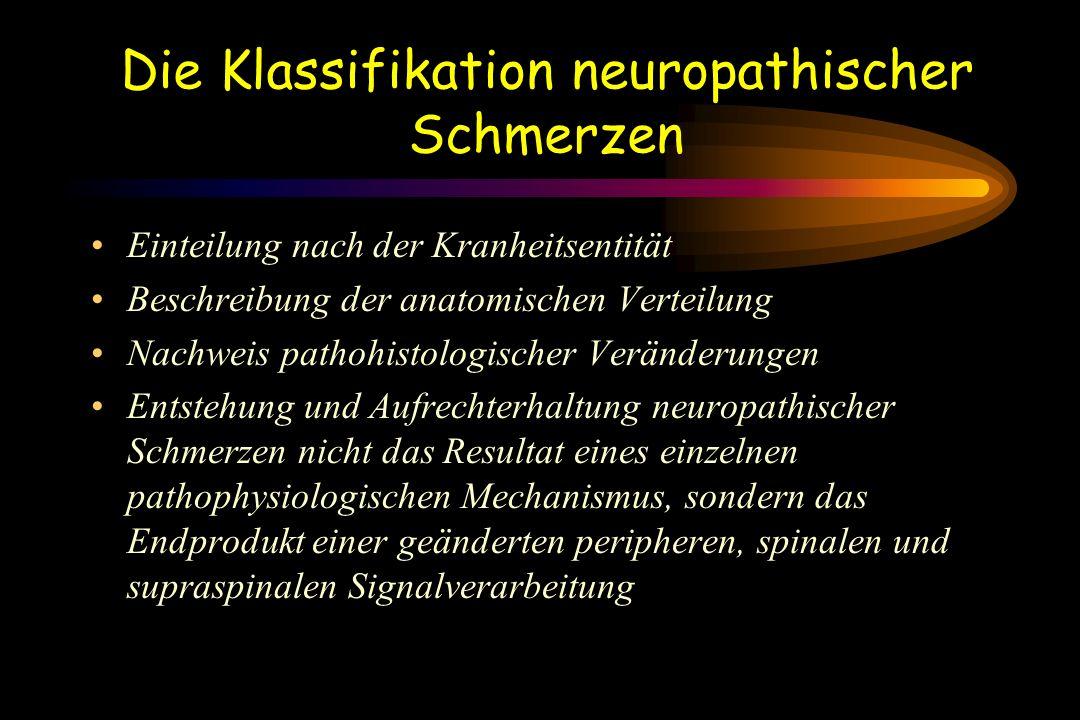 Die Klassifikation neuropathischer Schmerzen Einteilung nach der Kranheitsentität Beschreibung der anatomischen Verteilung Nachweis pathohistologische