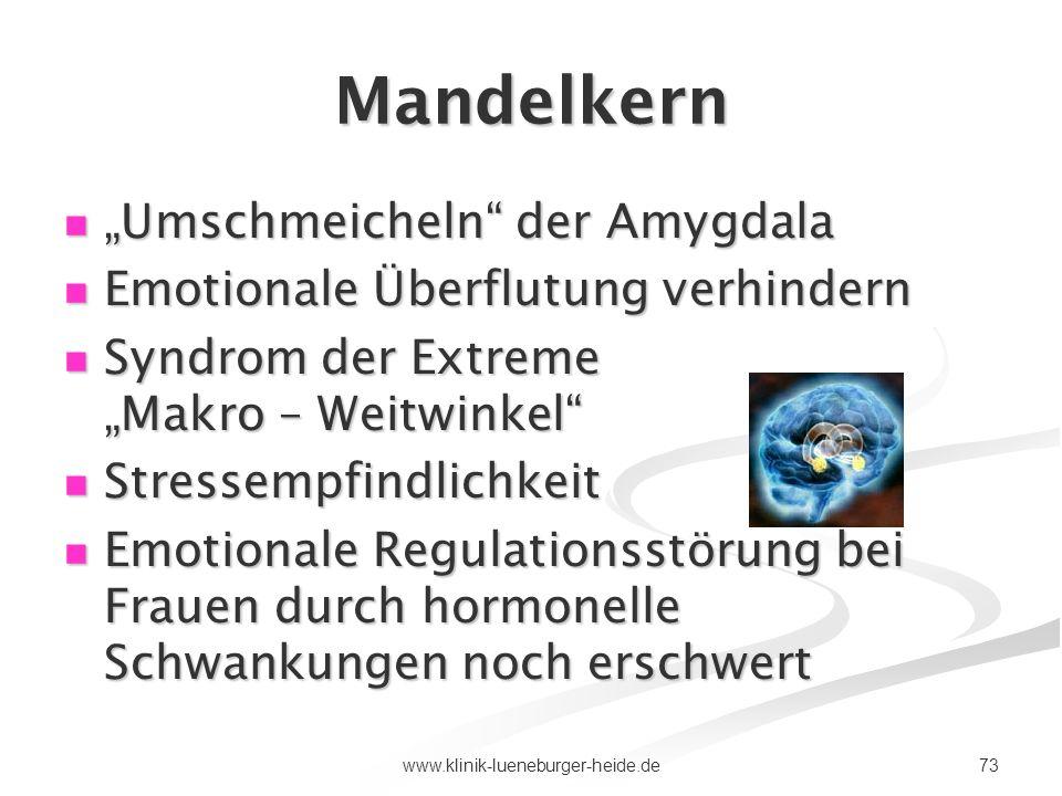 73www.klinik-lueneburger-heide.de Mandelkern Umschmeicheln der Amygdala Umschmeicheln der Amygdala Emotionale Überflutung verhindern Emotionale Überfl