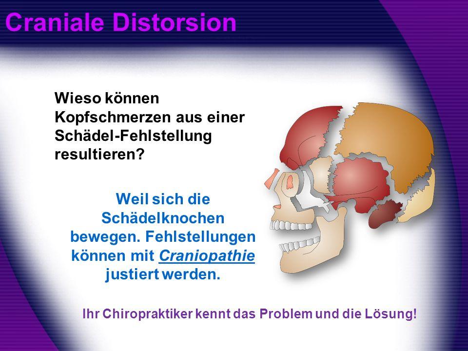 Craniale Distorsion Wieso können Kopfschmerzen aus einer Schädel-Fehlstellung resultieren? Weil sich die Schädelknochen bewegen. Fehlstellungen können