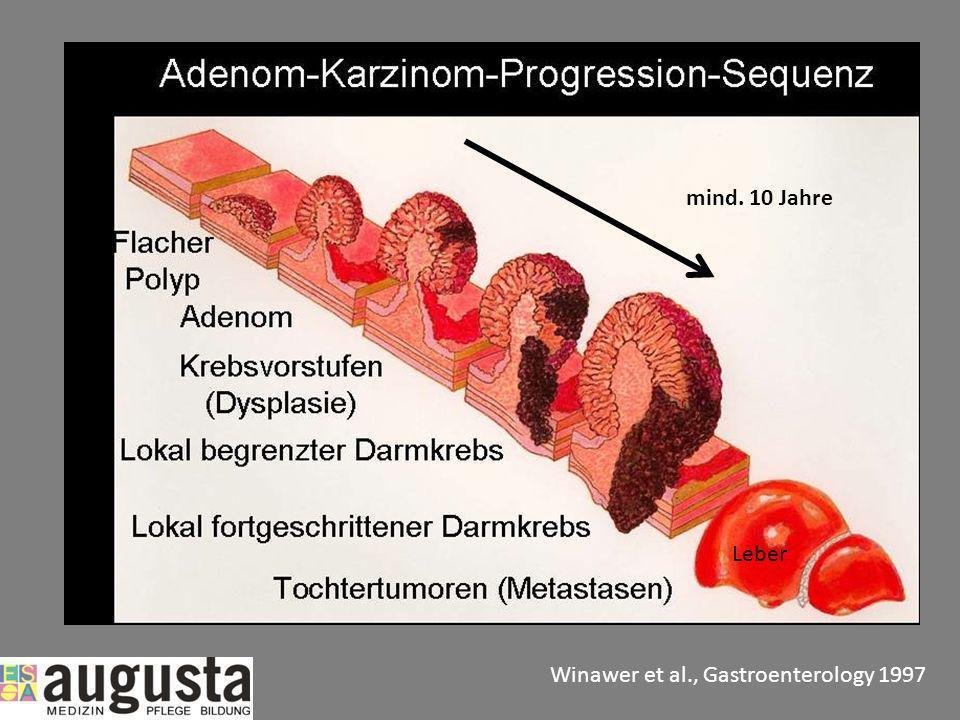 mind. 10 Jahre Winawer et al., Gastroenterology 1997 Leber