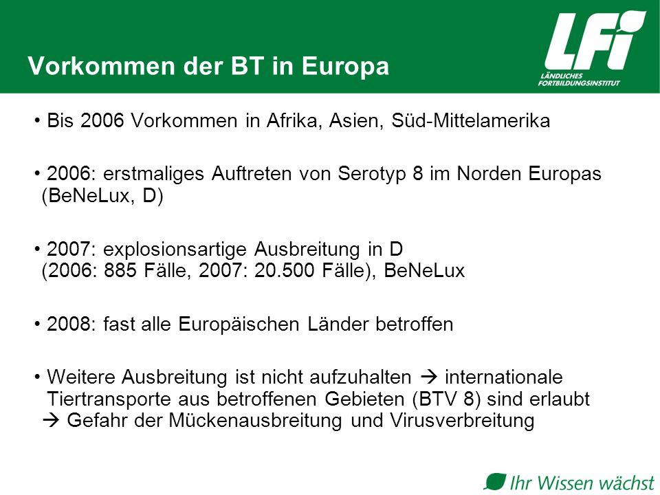 Vorkommen der BT in Europa Bis 2006 Vorkommen in Afrika, Asien, Süd-Mittelamerika 2006: erstmaliges Auftreten von Serotyp 8 im Norden Europas (BeNeLux