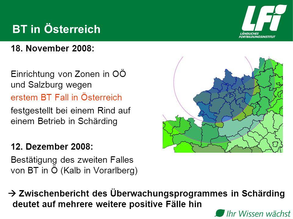 BT in Österreich 18. November 2008: Einrichtung von Zonen in OÖ und Salzburg wegen erstem BT Fall in Österreich festgestellt bei einem Rind auf einem