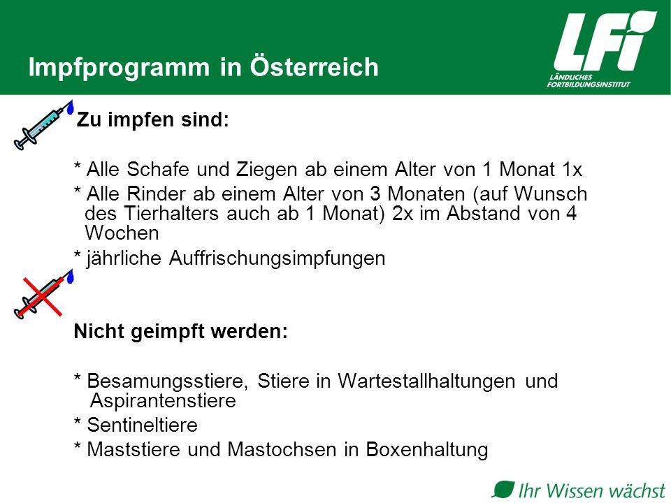 Impfprogramm in Österreich Zu impfen sind: * Alle Schafe und Ziegen ab einem Alter von 1 Monat 1x * Alle Rinder ab einem Alter von 3 Monaten (auf Wuns