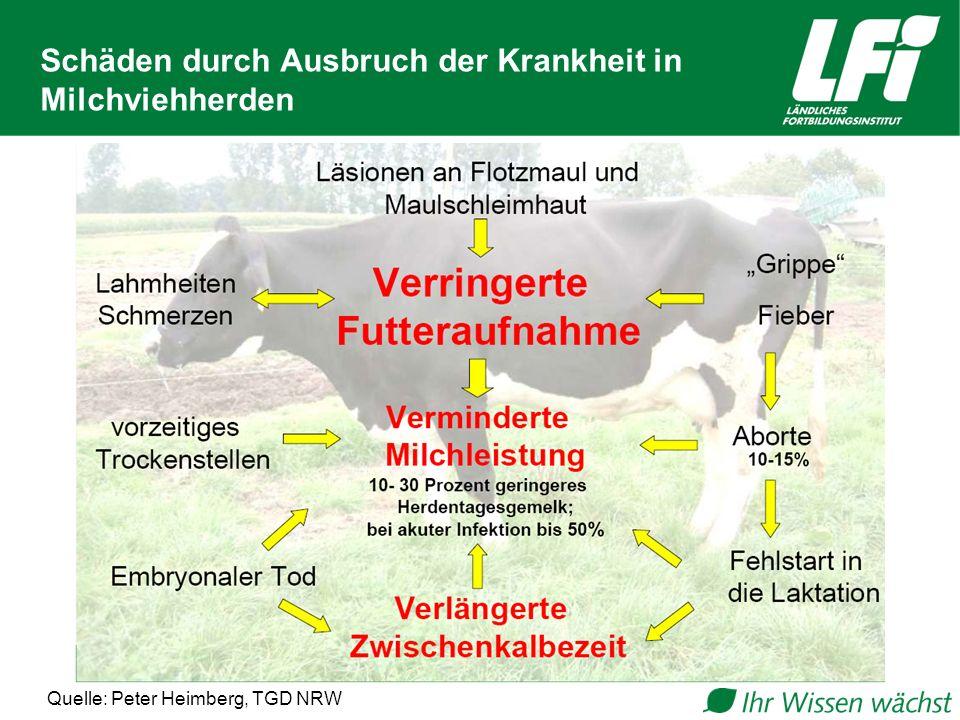 Schäden durch Ausbruch der Krankheit in Milchviehherden Quelle: Peter Heimberg, TGD NRW