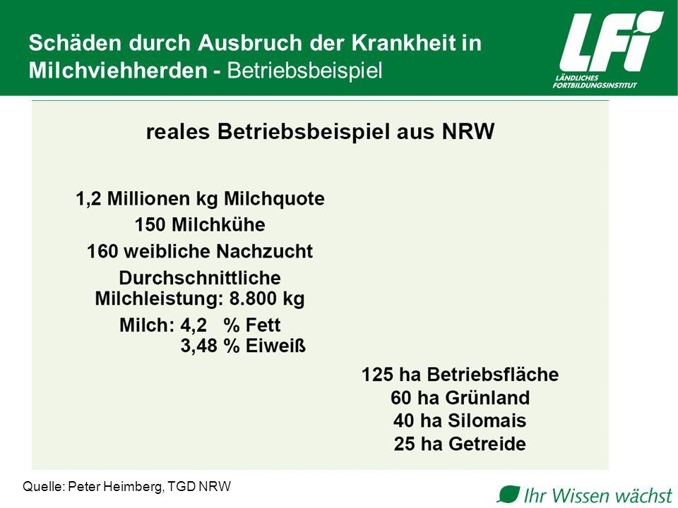 Schäden durch Ausbruch der Krankheit in Milchviehherden - Betriebsbeispiel Quelle: Peter Heimberg, TGD NRW