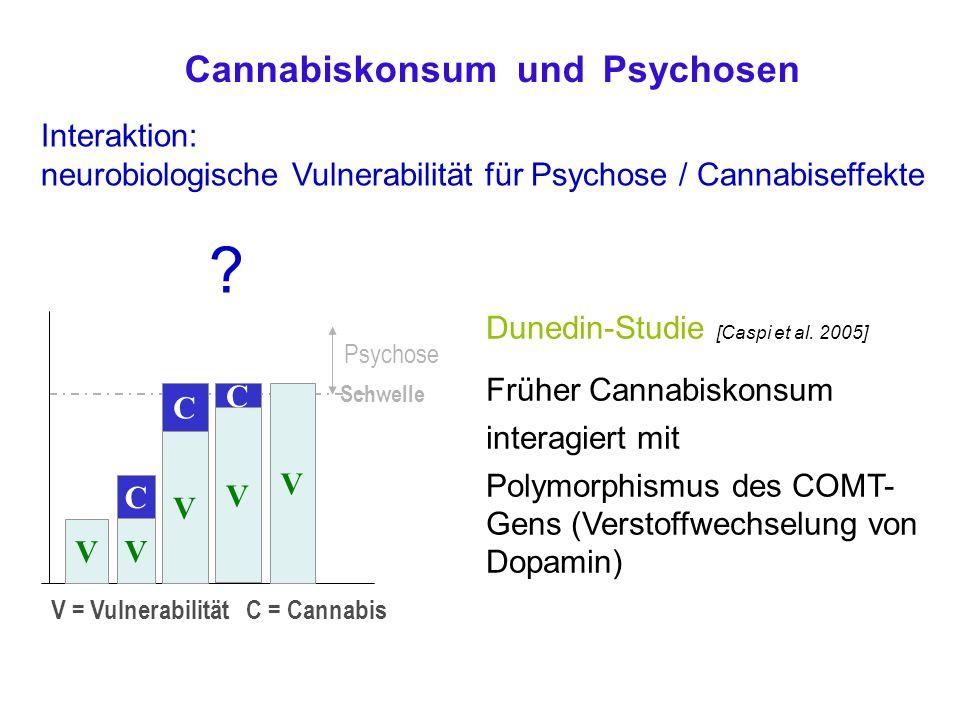 Cannabiskonsum und Psychosen Interaktion: neurobiologische Vulnerabilität für Psychose / Cannabiseffekte .