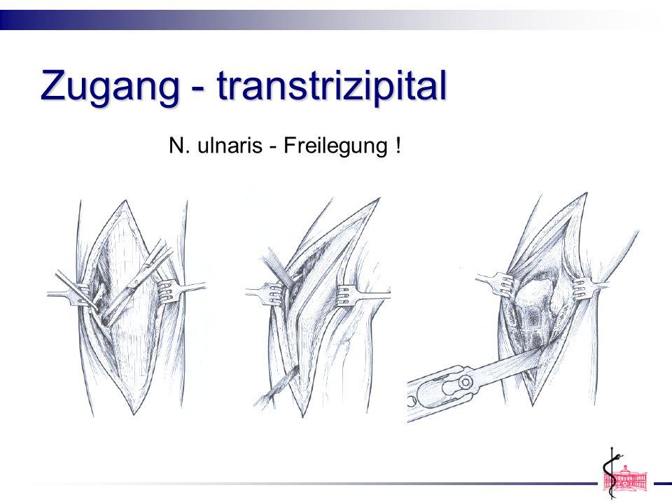 Zugang - transtrizipital N. ulnaris - Freilegung !
