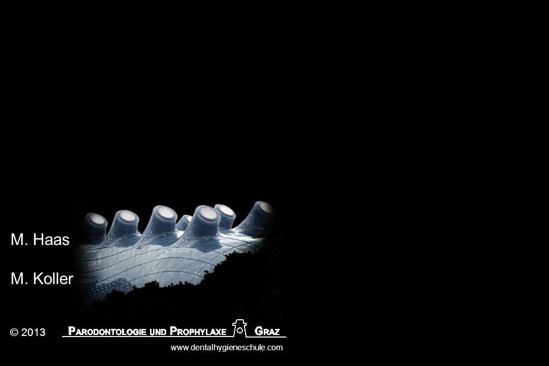 © 2013 www.dentalhygieneschule.com M. Haas M. Koller