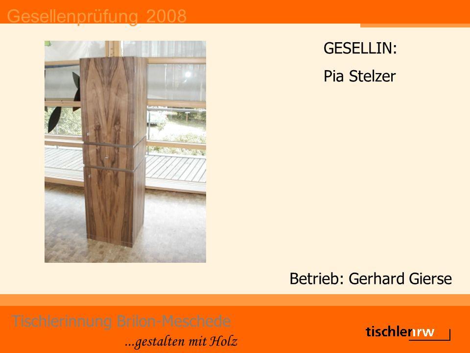 Gesellenprüfung 2008 Tischlerinnung Brilon-Meschede...gestalten mit Holz Betrieb: Gerhard Gierse GESELLIN: Pia Stelzer