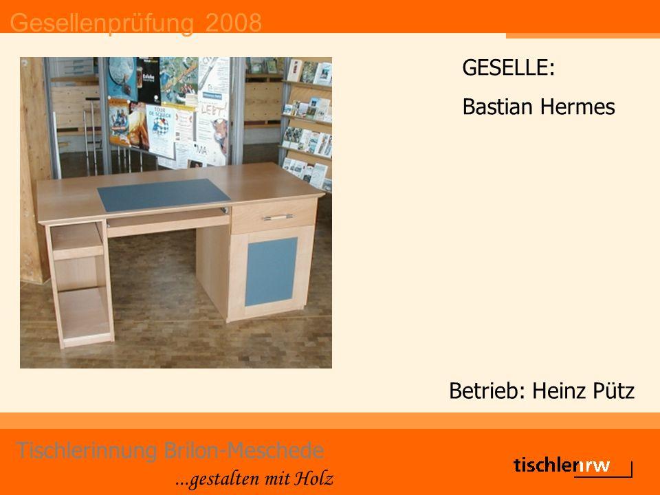 Gesellenprüfung 2008 Tischlerinnung Brilon-Meschede...gestalten mit Holz Betrieb: Josef Fabri Dominik Ross DIE GUTE FORM Belobigung