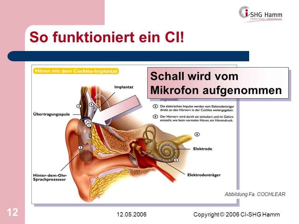 12.05.2006Copyright © 2006 CI-SHG Hamm 12 So funktioniert ein CI! Abbildung Fa. COCHLEAR Schall wird vom Mikrofon aufgenommen
