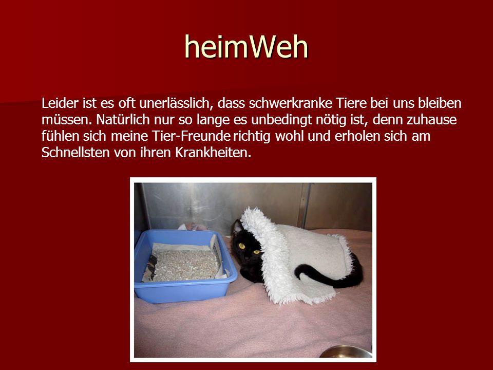 heimWeh Leider ist es oft unerlässlich, dass schwerkranke Tiere bei uns bleiben müssen. Natürlich nur so lange es unbedingt nötig ist, denn zuhause fü