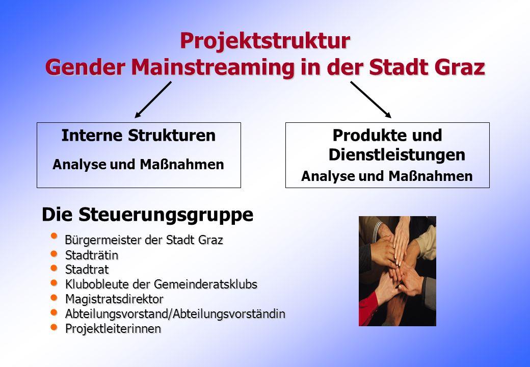 Projektstruktur Gender Mainstreaming in der Stadt Graz Interne Strukturen Analyse und Maßnahmen Produkte und Dienstleistungen Analyse und Maßnahmen Di