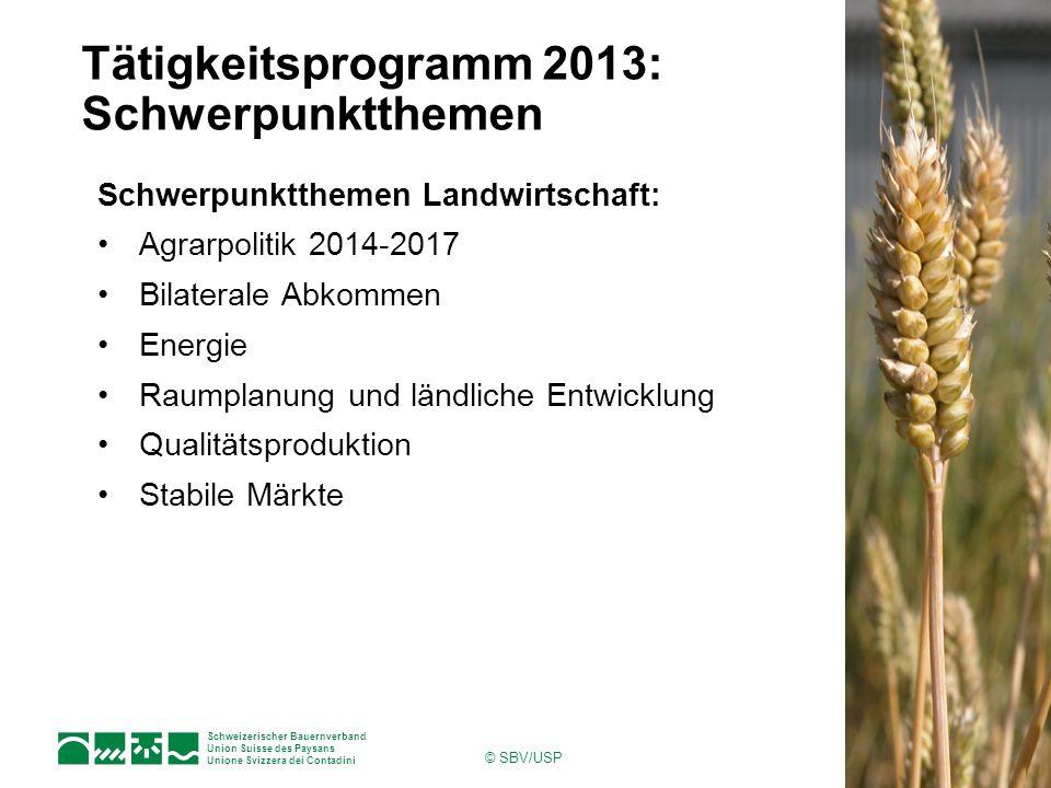 Schweizerischer Bauernverband Union Suisse des Paysans Unione Svizzera dei Contadini © SBV/USP Tätigkeitsprogramm 2013: Schwerpunktthemen Schwerpunktt