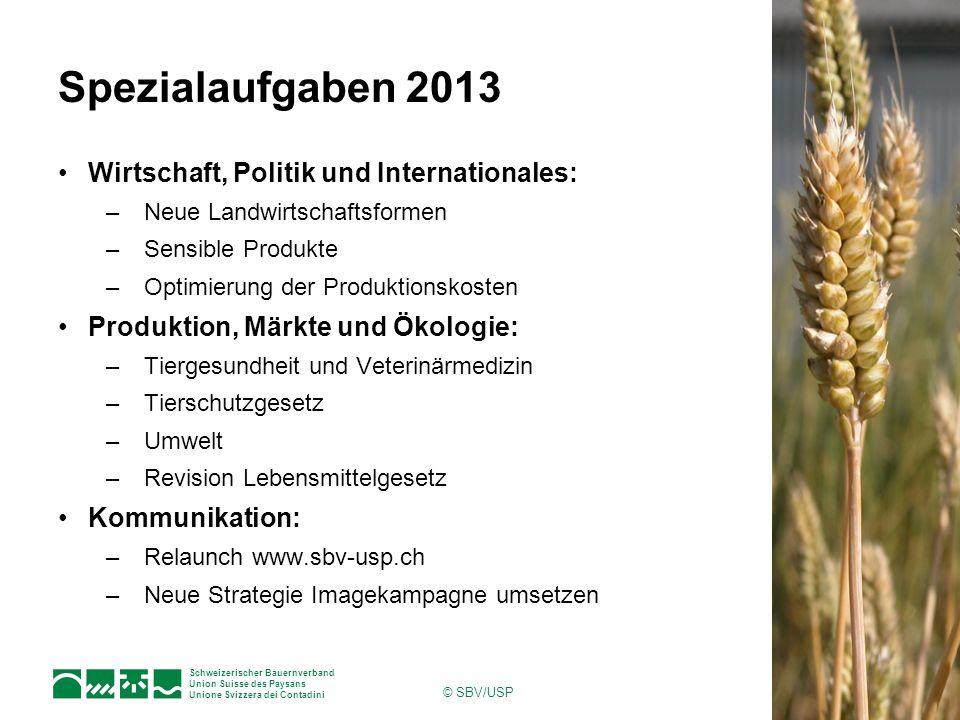 Schweizerischer Bauernverband Union Suisse des Paysans Unione Svizzera dei Contadini © SBV/USP Spezialaufgaben 2013 Wirtschaft, Politik und Internatio