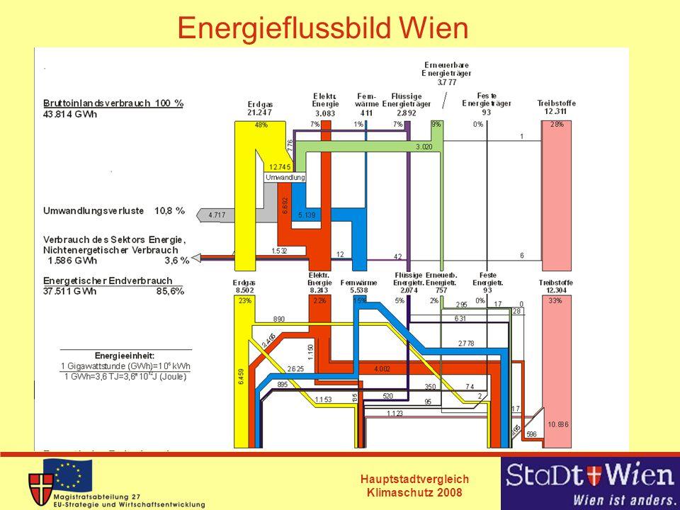 Hauptstadtvergleich Klimaschutz 2008 Energieflussbild Wien
