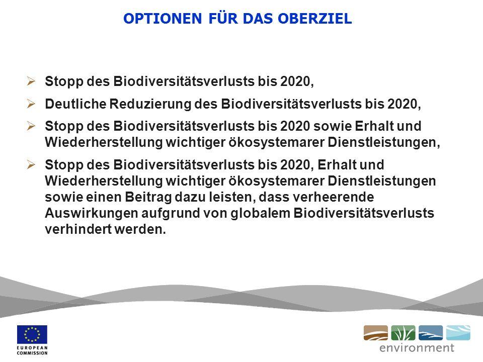OPTIONEN FÜR DAS OBERZIEL Stopp des Biodiversitätsverlusts bis 2020, Deutliche Reduzierung des Biodiversitätsverlusts bis 2020, Stopp des Biodiversitätsverlusts bis 2020 sowie Erhalt und Wiederherstellung wichtiger ökosystemarer Dienstleistungen, Stopp des Biodiversitätsverlusts bis 2020, Erhalt und Wiederherstellung wichtiger ökosystemarer Dienstleistungen sowie einen Beitrag dazu leisten, dass verheerende Auswirkungen aufgrund von globalem Biodiversitätsverlusts verhindert werden.