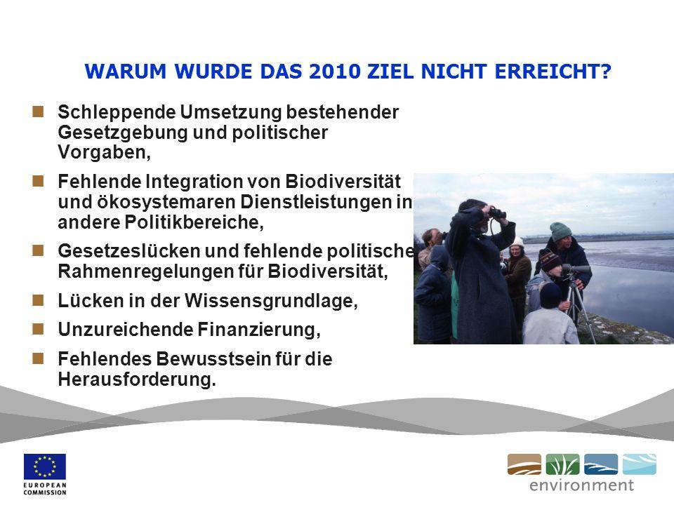 WARUM WURDE DAS 2010 ZIEL NICHT ERREICHT.