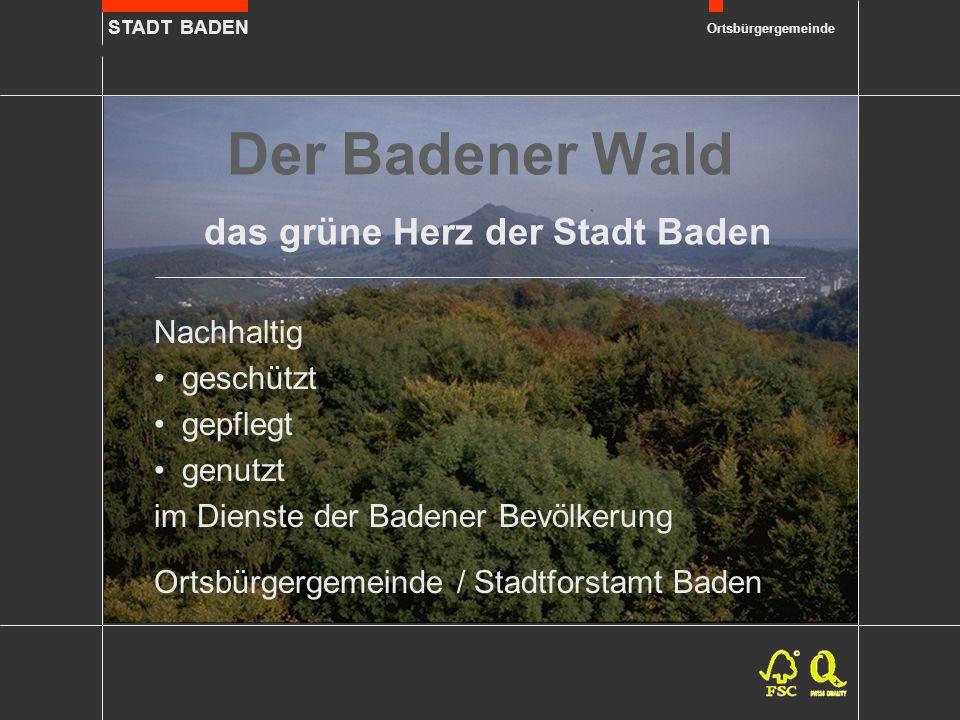 STADT BADEN Ortsbürgergemeinde Der Badener Wald das grüne Herz der Stadt Baden Nachhaltig geschützt gepflegt genutzt im Dienste der Badener Bevölkerung Ortsbürgergemeinde / Stadtforstamt Baden