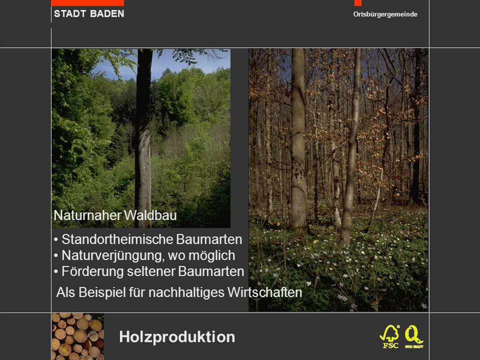 STADT BADEN Ortsbürgergemeinde Als Beispiel für nachhaltiges Wirtschaften Holzproduktion Naturnaher Waldbau Standortheimische Baumarten Naturverjüngung, wo möglich Förderung seltener Baumarten