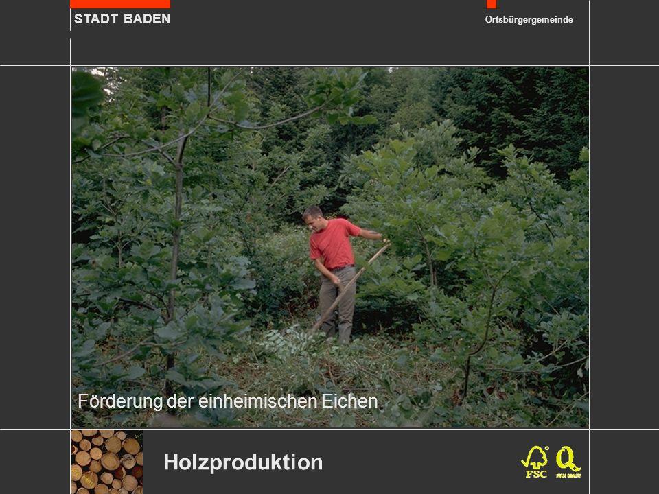 STADT BADEN Ortsbürgergemeinde Förderung der einheimischen Eichen Holzproduktion