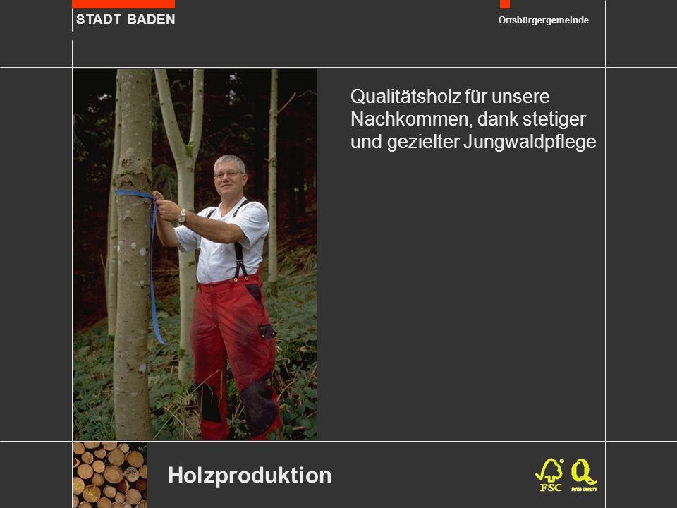 STADT BADEN Ortsbürgergemeinde Holzproduktion Qualitätsholz für unsere Nachkommen, dank stetiger und gezielter Jungwaldpflege