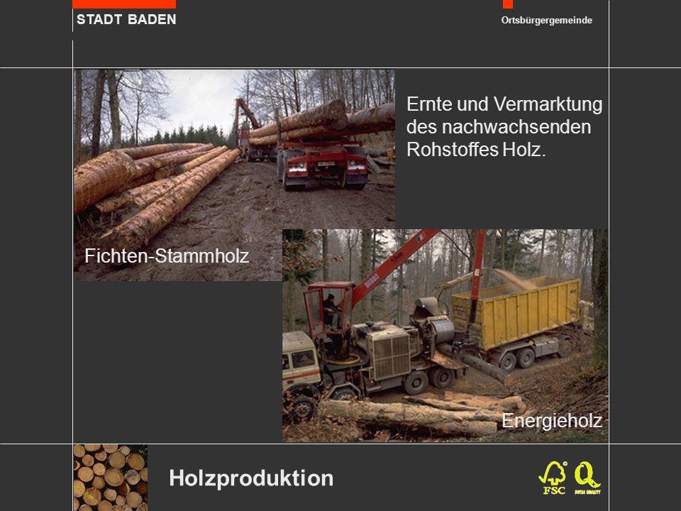 STADT BADEN Ortsbürgergemeinde Holzproduktion Fichten-Stammholz Ernte und Vermarktung des nachwachsenden Rohstoffes Holz. Energieholz