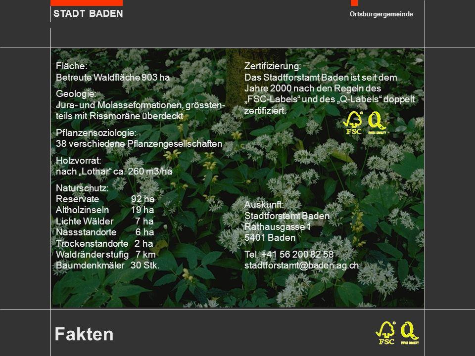 STADT BADEN Ortsbürgergemeinde Fakten Fläche: Betreute Waldfläche 903 ha Geologie: Jura- und Molasseformationen, grössten- teils mit Rissmoräne überde