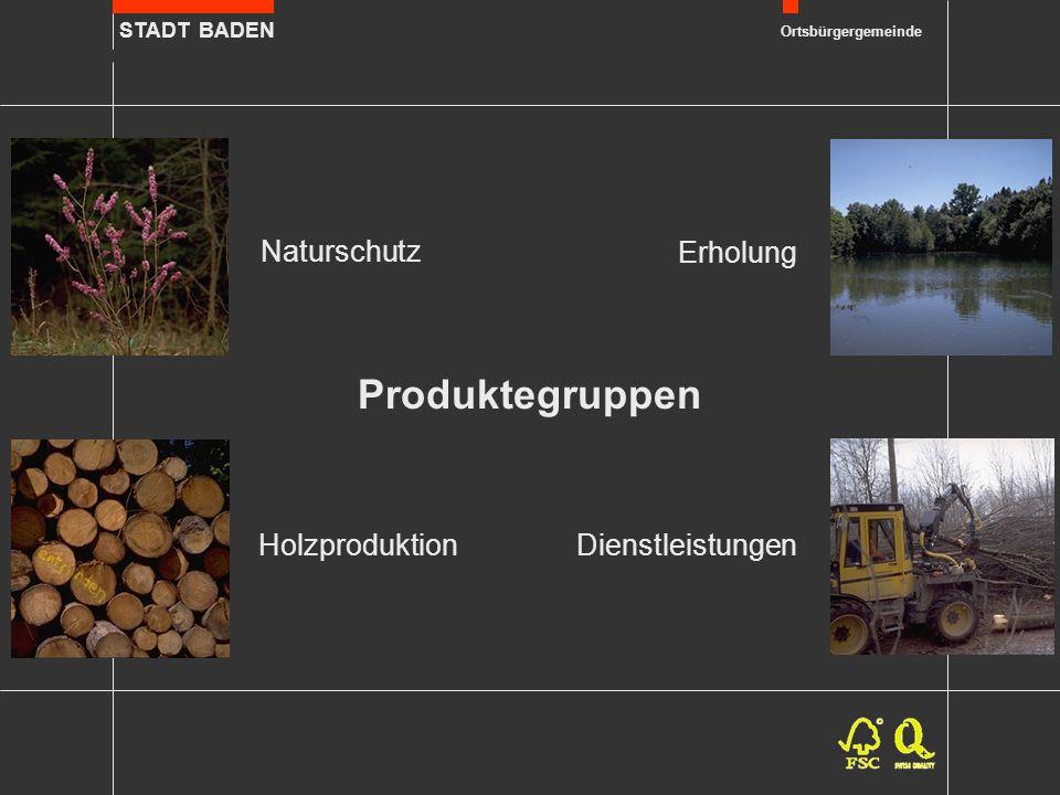 STADT BADEN Ortsbürgergemeinde Produktegruppen Erholung Dienstleistungen Holzproduktion Naturschutz