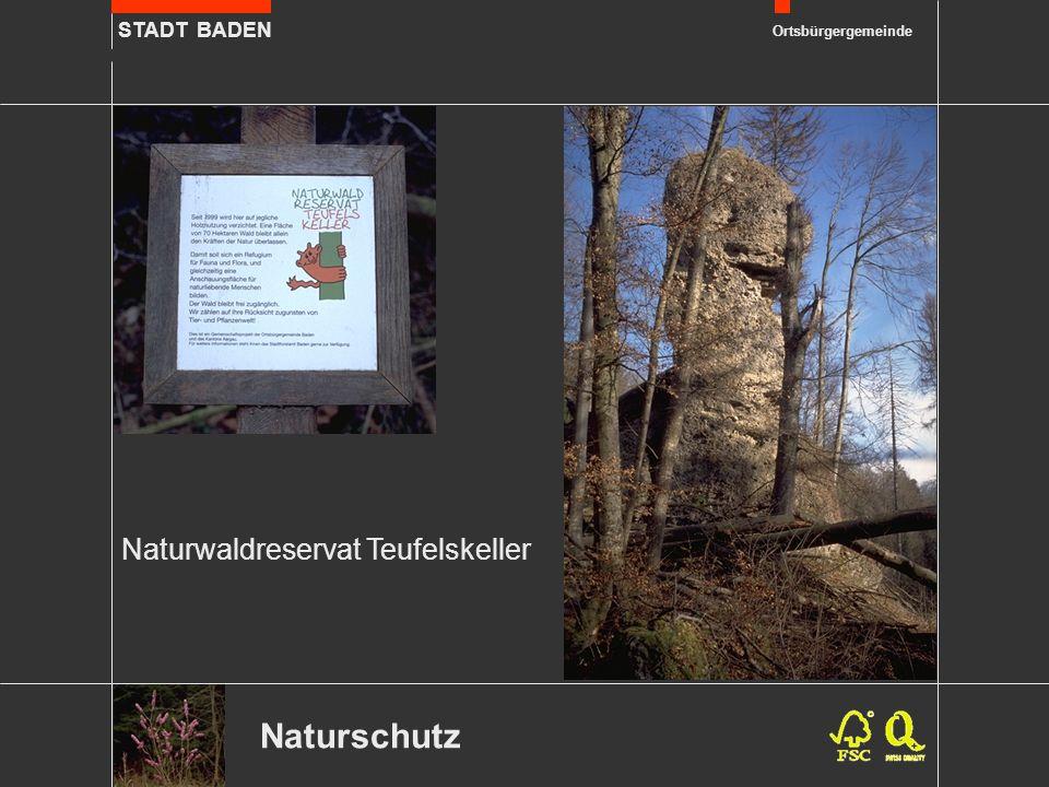 STADT BADEN Ortsbürgergemeinde Erholung Ein vielfältiges Wegnetz von 80 km Länge erschliesst den Wald für die Waldbesucher und –besucherinnen.