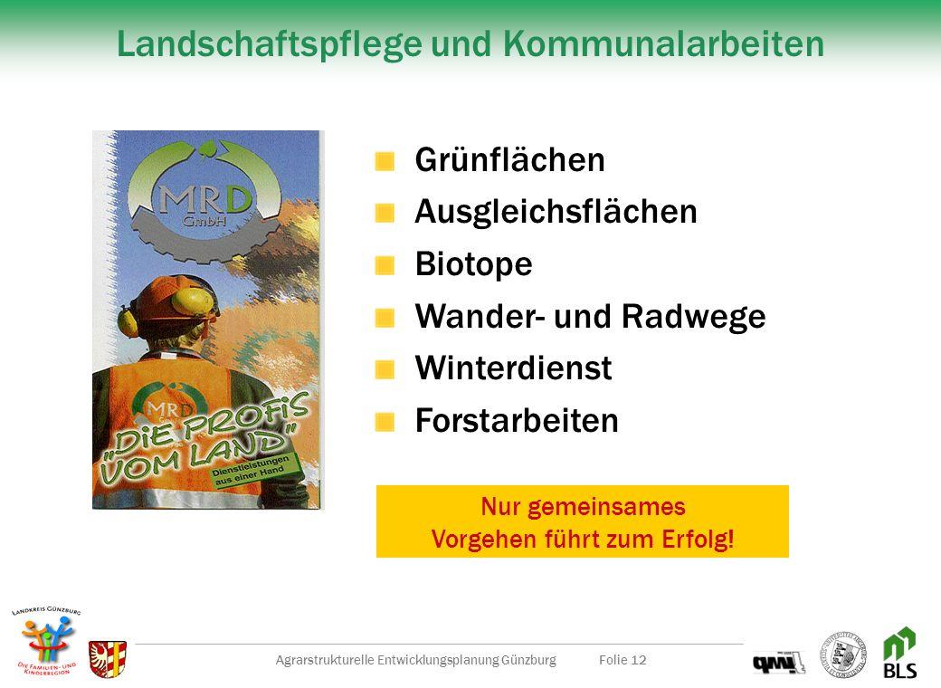 Agrarstrukturelle Entwicklungsplanung GünzburgFolie 11 Bäuerliche Aktionstage im LEGOLAND Regionale Spezialitäten Vorführungen Ländliche SpieleUnterha