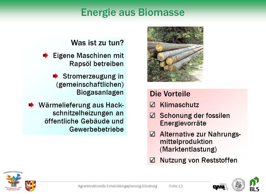 Agrarstrukturelle Entwicklungsplanung GünzburgFolie 12 Landschaftspflege und Kommunalarbeiten Grünflächen Ausgleichsflächen Biotope Wander- und Radweg