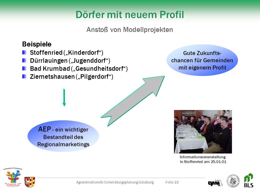 Agrarstrukturelle Entwicklungsplanung GünzburgFolie 21 Lernende Region Günzburg Schritte der Umsetzung Regionalmarketing Günzburg + Ländliche Entwickl