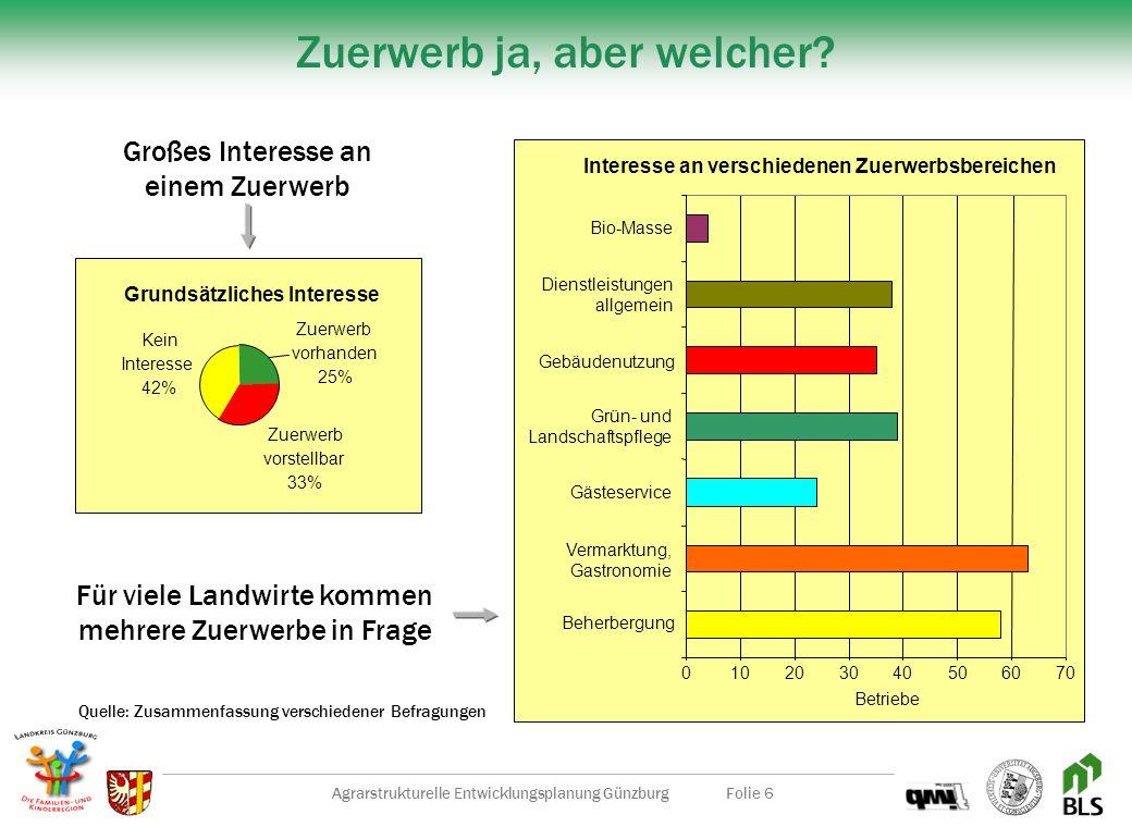 Agrarstrukturelle Entwicklungsplanung GünzburgFolie 6 Zuerwerb ja, aber welcher.