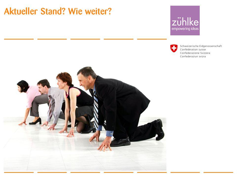 © Zühlke 2011 ALM Day 2011 Aktueller Stand? Wie weiter?
