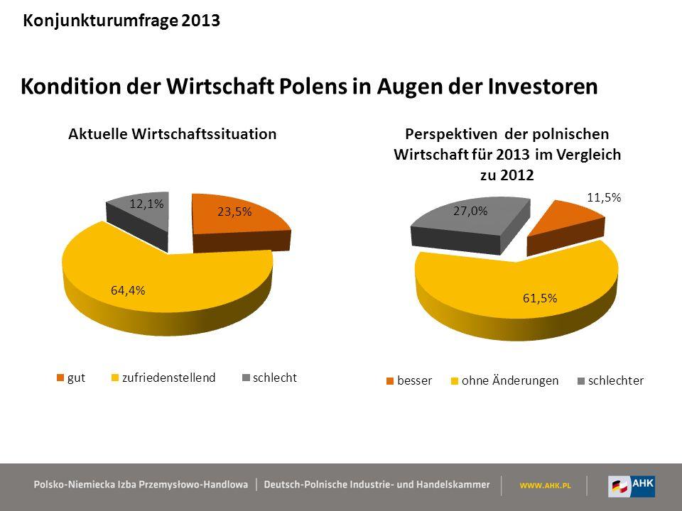 Kondition der Wirtschaft Polens in Augen der Investoren Konjunkturumfrage 2013
