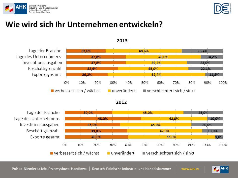 Investitionsfaktoren Konjunkturumfrage 2013