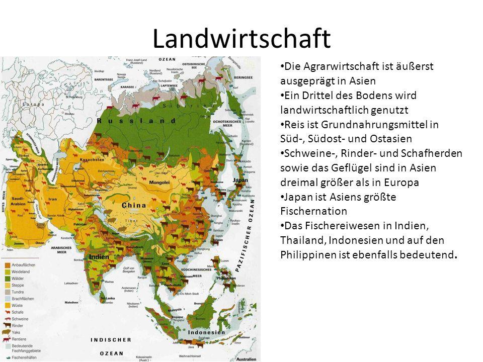 Landwirtschaft Die Agrarwirtschaft ist äußerst ausgeprägt in Asien Ein Drittel des Bodens wird landwirtschaftlich genutzt Reis ist Grundnahrungsmittel