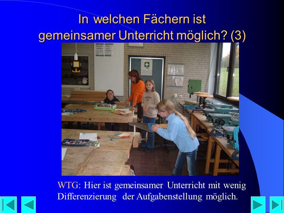WTG: Hier ist gemeinsamer Unterricht mit wenig Differenzierung der Aufgabenstellung möglich.