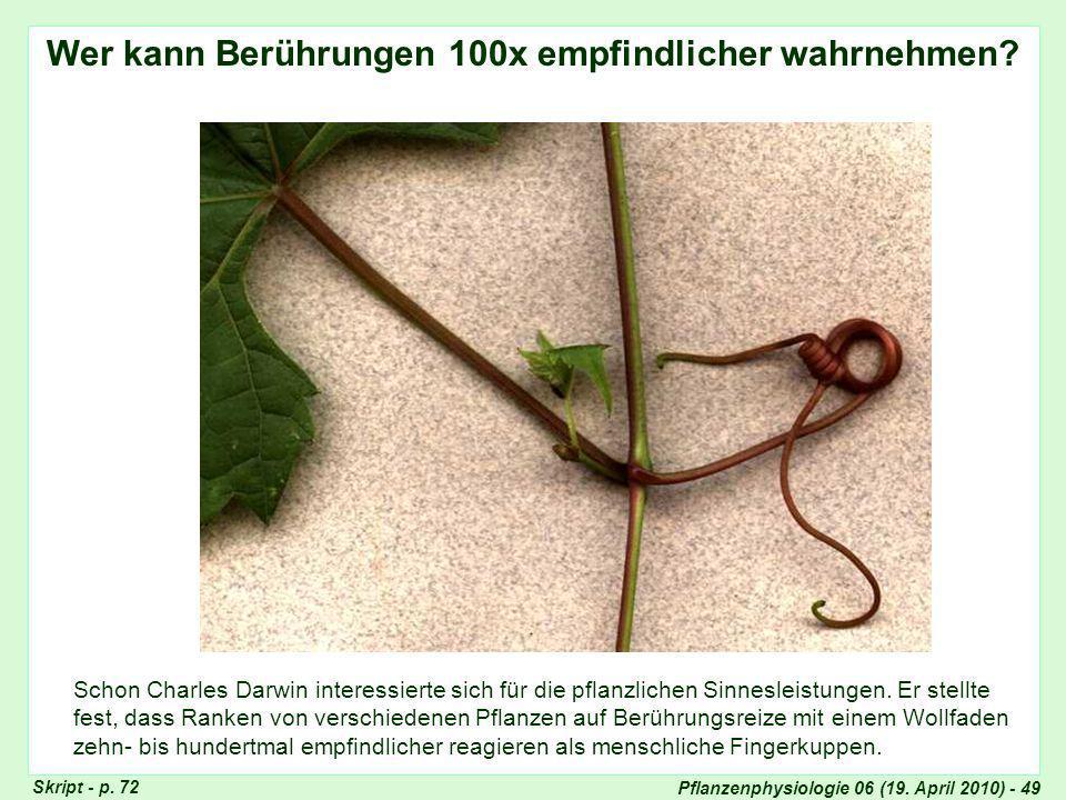 Pflanzenphysiologie 06 (19.April 2010) - 49 Ranke Vitis Skript - p.