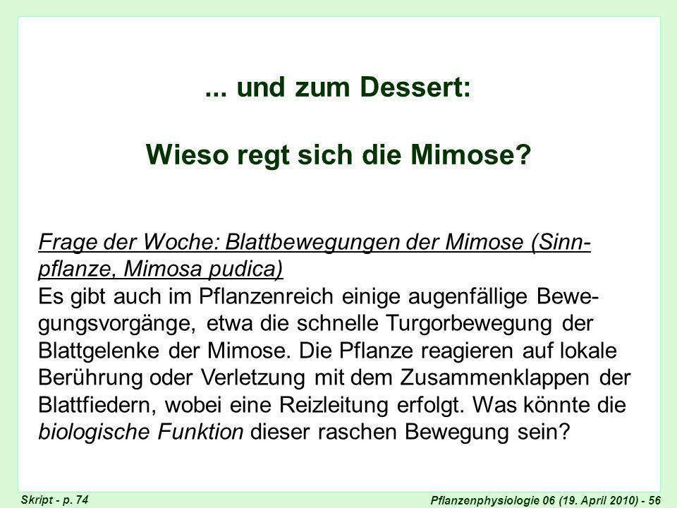 Pflanzenphysiologie 06 (19.April 2010) - 56... und zum Dessert: Wieso regt sich die Mimose.