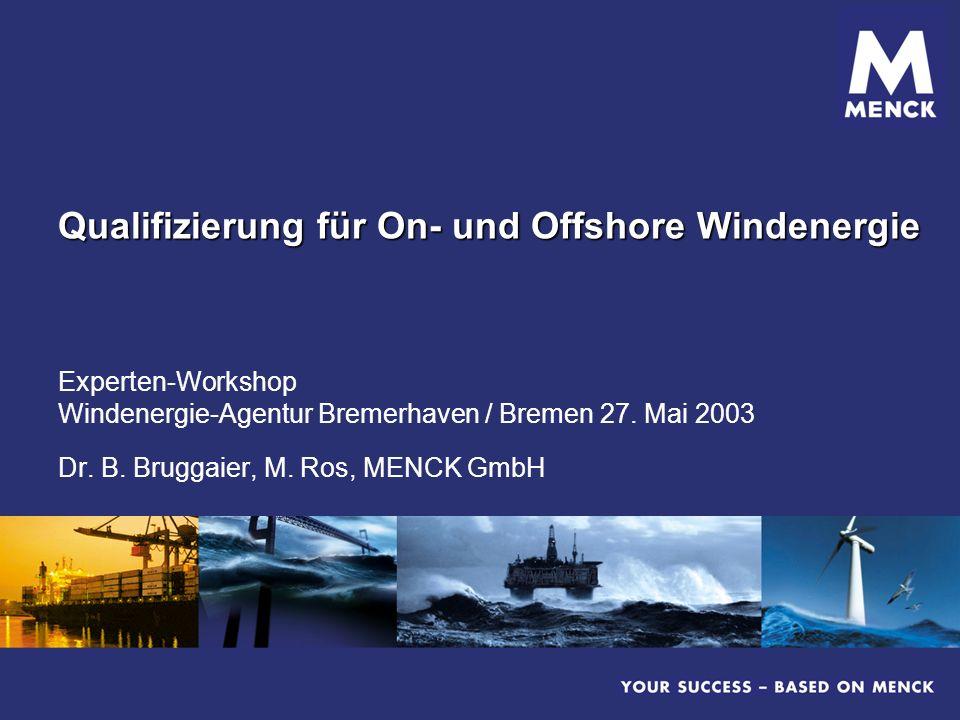 Qualifizierung für On- und Offshore Windenergie Experten-Workshop Windenergie-Agentur Bremerhaven / Bremen 27. Mai 2003 Dr. B. Bruggaier, M. Ros, MENC
