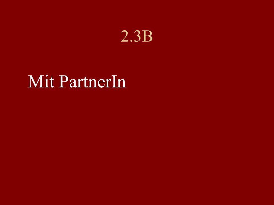 2.3B Mit PartnerIn