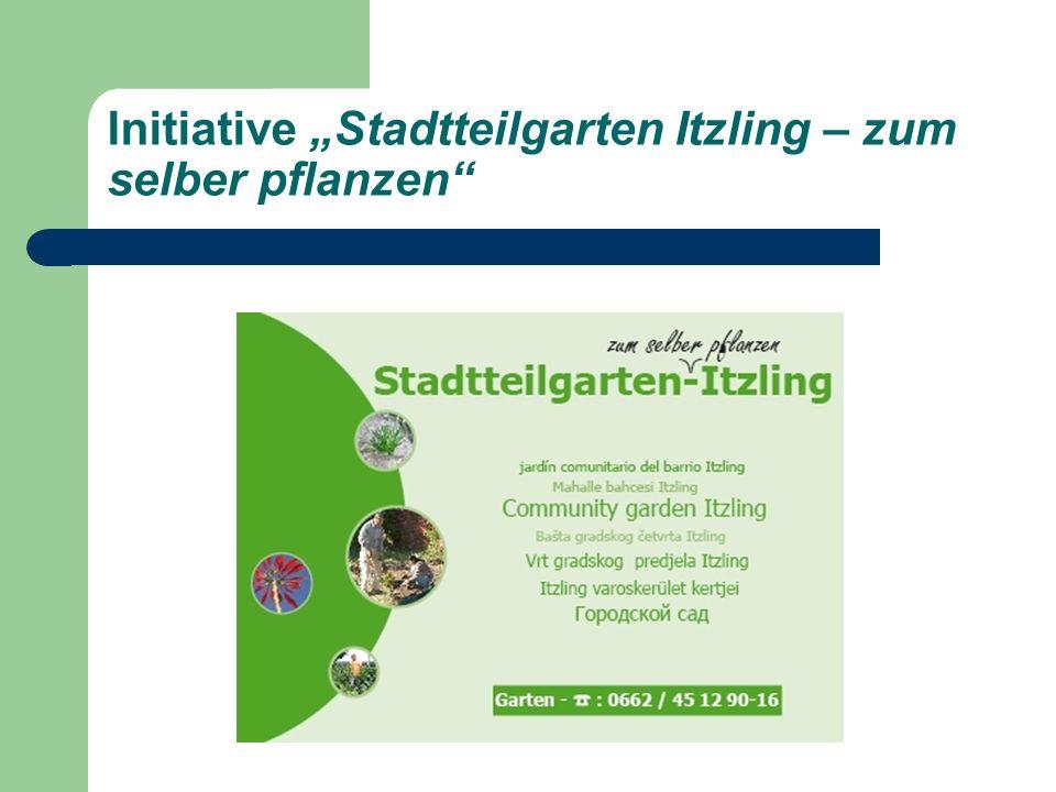 Initiative Stadtteilgarten Itzling – zum selber pflanzen