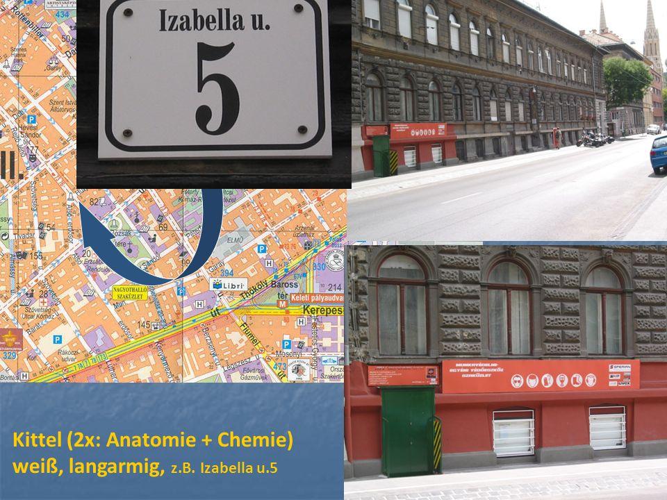 Kittel (2x: Anatomie + Chemie) weiß, langarmig, z.B. Izabella u.5