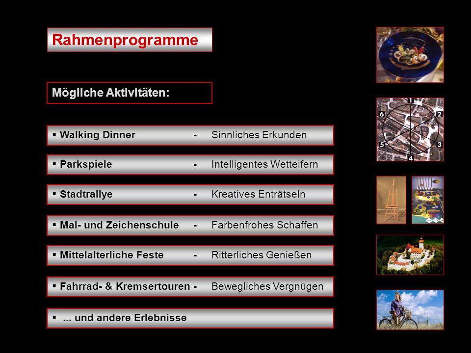 Rahmenprogramme Mögliche Aktivitäten:...