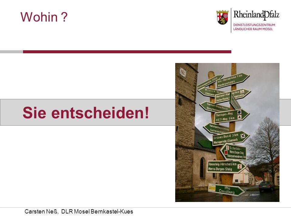 Carsten Neß, DLR Mosel Bernkastel-Kues Wohin ? Sie entscheiden!