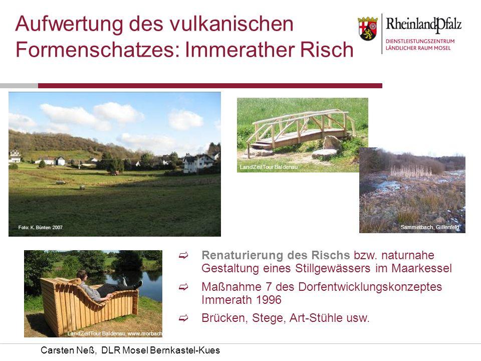 Carsten Neß, DLR Mosel Bernkastel-Kues Aufwertung des vulkanischen Formenschatzes: Immerather Risch Renaturierung des Rischs bzw. naturnahe Gestaltung