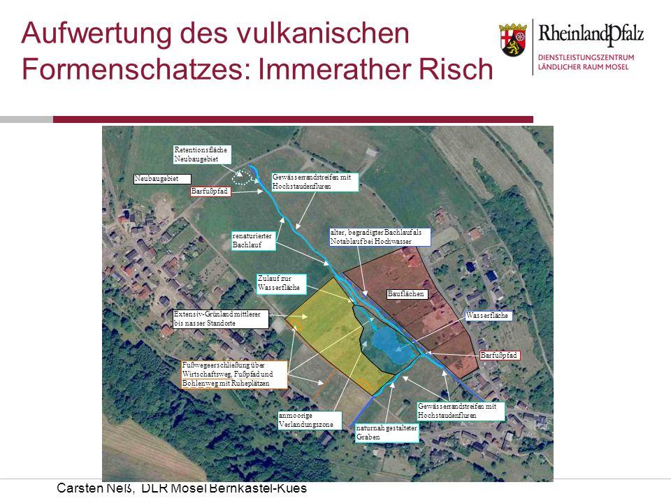 Carsten Neß, DLR Mosel Bernkastel-Kues Aufwertung des vulkanischen Formenschatzes: Immerather Risch Bauflächen renaturierter Bachlauf Extensiv-Grünlan