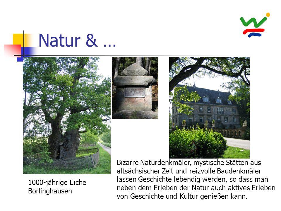 Natur & … Bizarre Naturdenkmäler, mystische Stätten aus altsächsischer Zeit und reizvolle Baudenkmäler lassen Geschichte lebendig werden, so dass man neben dem Erleben der Natur auch aktives Erleben von Geschichte und Kultur genießen kann.